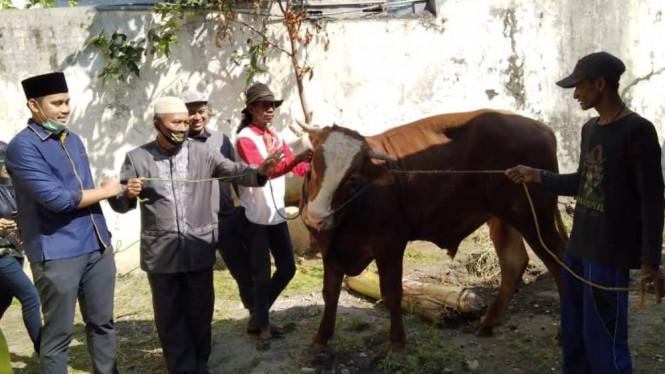 Serahkan Tiga Ekor Sapi ke Golkar Kendal, Bacawabup Dico Ganinduto Ingatkan Gotong Royong