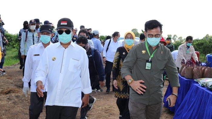 Mentan Ungkap Presiden Jokowi Apresiasi Keberhasilan Sahbirin Noor Majukan Pertanian Kalsel