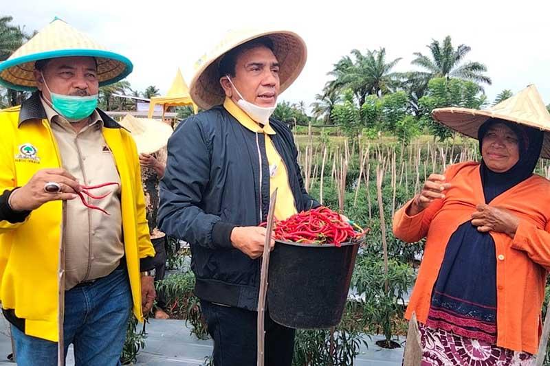 TM Nurlif Puji Hasil Panen Perdana Petani Cabai Binaan TR Keumangan di Nagan Raya