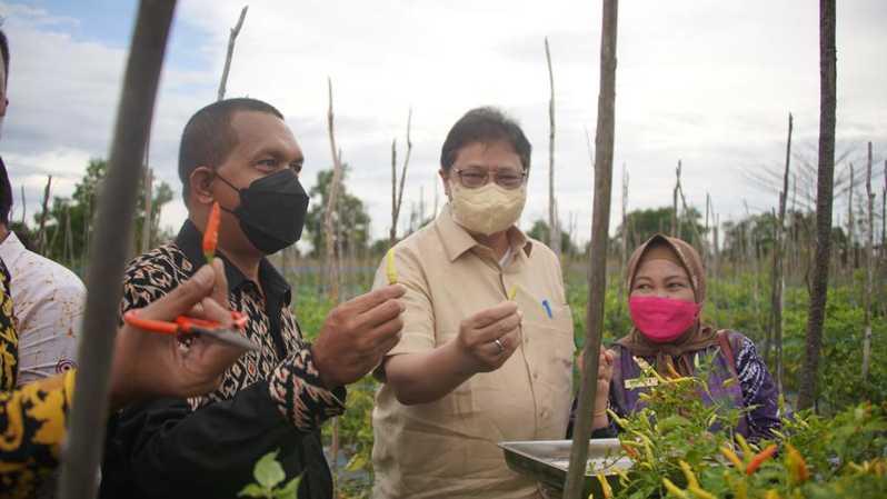 Menko Airlangga Apresiasi Terobosan Pemprov Kalsel Bantu Petani dan Pasien COVID-19