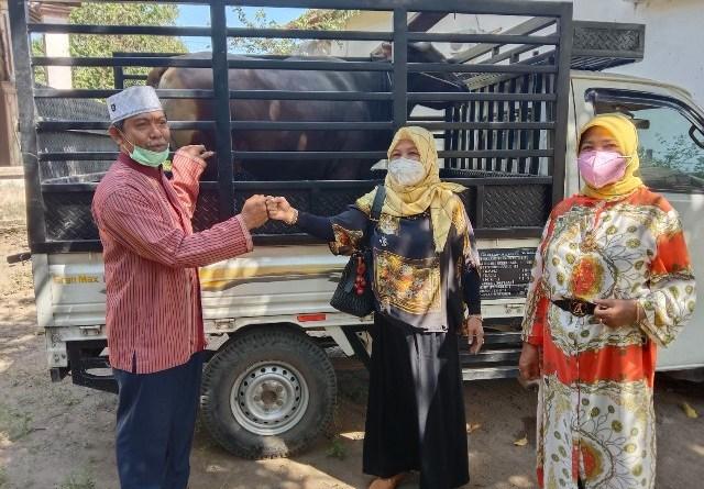 Ketua DPRD NTB Baiq Isvie Rupaeda Bagikan 5 Ekor Sapi Kurban Untuk Masyarakat Lombok Timur