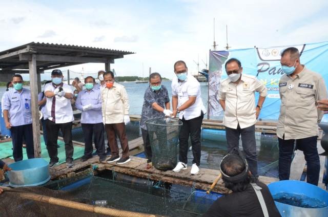 Sejahterakan Masyarakat Tanpa Rusak Alam, Bagus Adhi Apresiasi Budidaya Koral di Serangan Bali