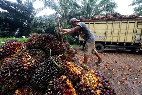 Disinyalir Jadi Kaki Tangan Asing, Firman Soebagyo Minta Pemerintah Tegas Kepada Greenpeace