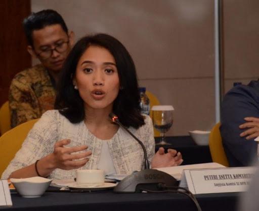 Puteri Komarudin Ingatkan Pemerintah Dampak Pandemik Virus Corona Pada Ekonomi Nasional