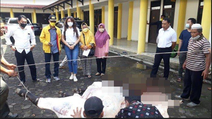 Golkar Sumsel Potong 2 Ekor Sapi Dodi Reza, Daging Kurban Dibagikan Door To Door