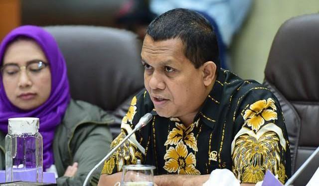 Melki Laka Lena Ungkap Pembatasan Sosial Berskala Besar Harus Disertai Penegakan Hukum