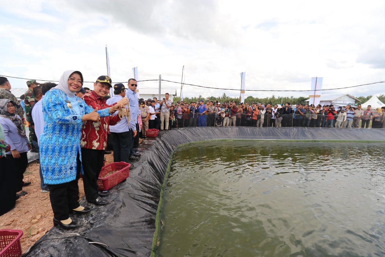 Bersama Menteri Kelautan dan Perikanan, Ria Norsan Panen Udang Vaname di Mempawah Hilir