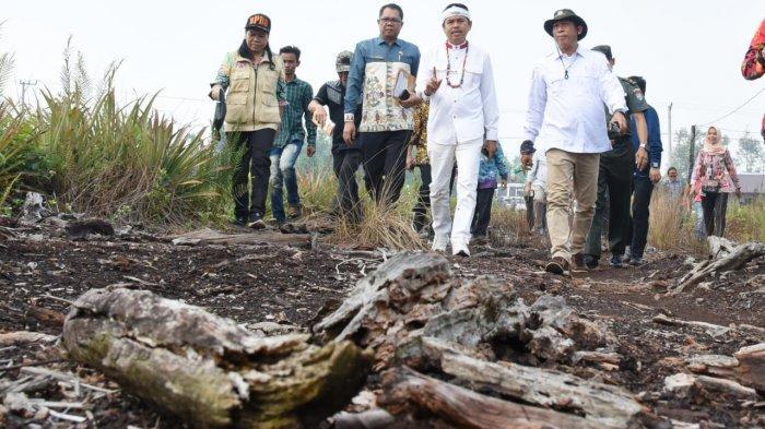 Dedi Mulyadi Kritik Himbauan Bupati Subang Basmi Kelelawar Untuk Tangkal Corona