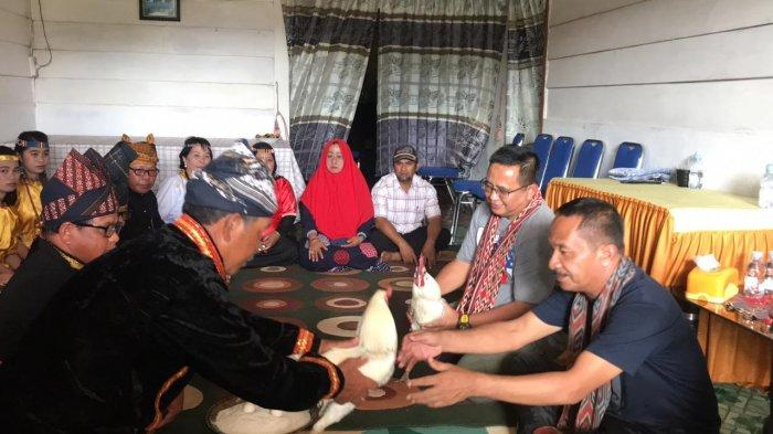 Disambut Prosesi Adat, Warga Seko Serahkan 2 Ekor Ayam Jantan Untuk Muhammad Fauzi