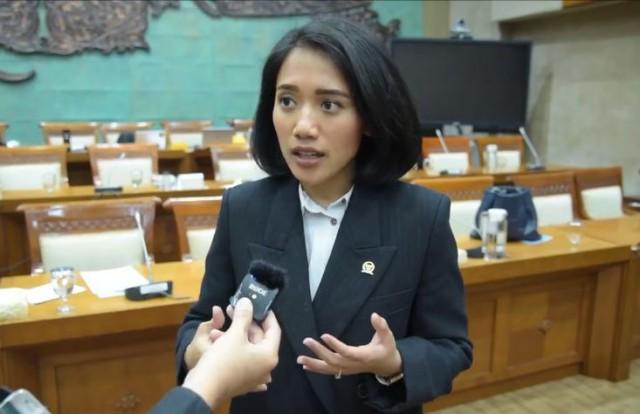 Puteri Komarudin Ingatkan Pemerintah Hati-Hati Tarik Pajak Ekonomi Digital