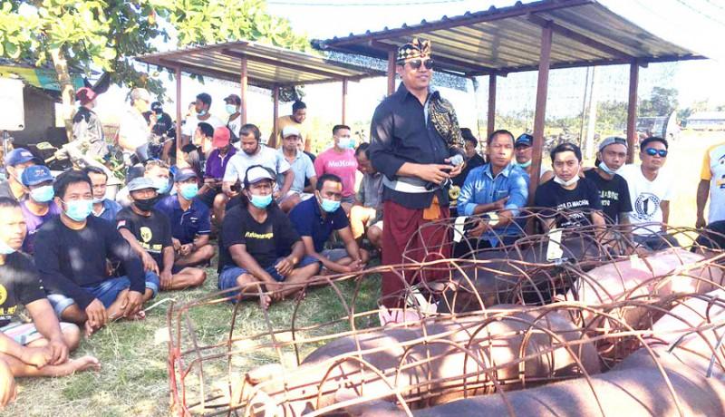 Galungan dan Kuningan, Wayan Suyasa Bagikan 4 Ton Daging Babi Untuk Warga Badung