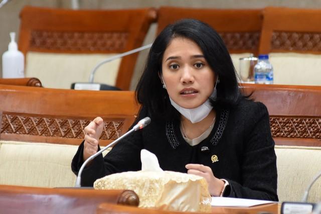 Puteri Komarudin Nilai Butuh Payung Hukum Memadai Lindungi Konsumen Jasa dan Layanan Fintech