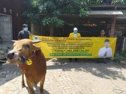 Wakil Bupati Mad Romli Bagikan 29 Ekor Sapi Ke Seluruh Kecamatan di Kabupaten Tangerang