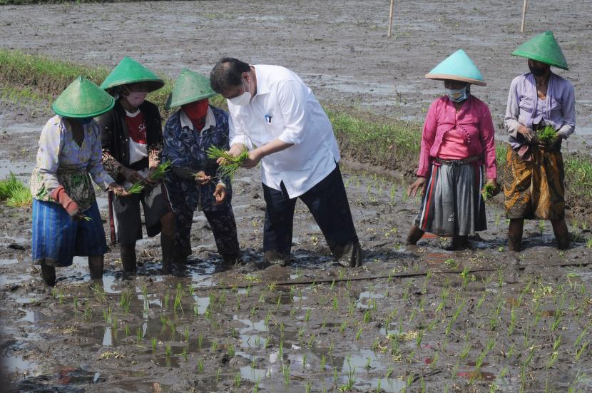 Jokowi Targetkan Kemiskinan Ekstrem Nol Persen di 2024, Airlangga Ungkap Solusinya