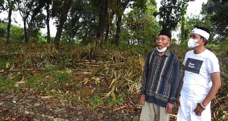 Dedi Mulyadi Murka Hutan Bambu Di Kutamanah Jatiluhur Alih Fungsi Jadi Kebun Pisang