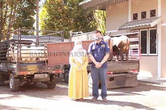 AMPI dan Fraksi Golkar Berbagi Hewan Kurban Untuk Masyarakat Tabalong