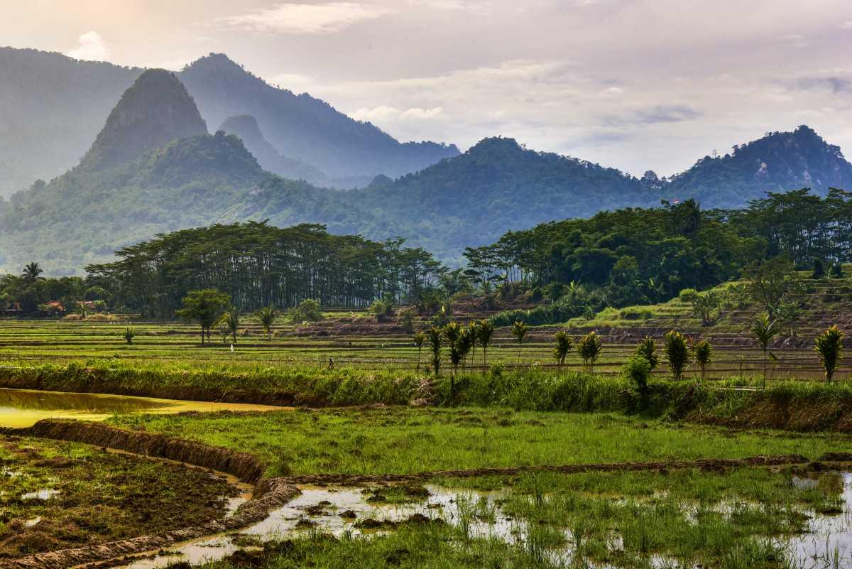 Dedi Mulyadi Usulkan Kawasan Gunung Sanggabuana Karawang Jadi Taman Nasional, Ini Alasannya