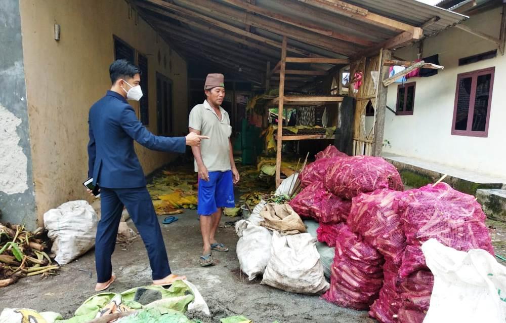 Fraksi Golkar DPRD Pandeglang Dukung Petani Ciherang Ekspor Talas Beneng Tembus Pasar Eropa